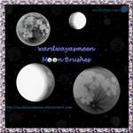 wardwayasmeen Moon Brushes