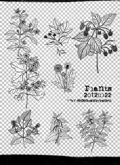 [mochizuki's] 20120322 plants png by mochizukikaoru