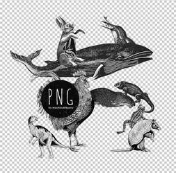 [mochizuki's] 20120702 animals png