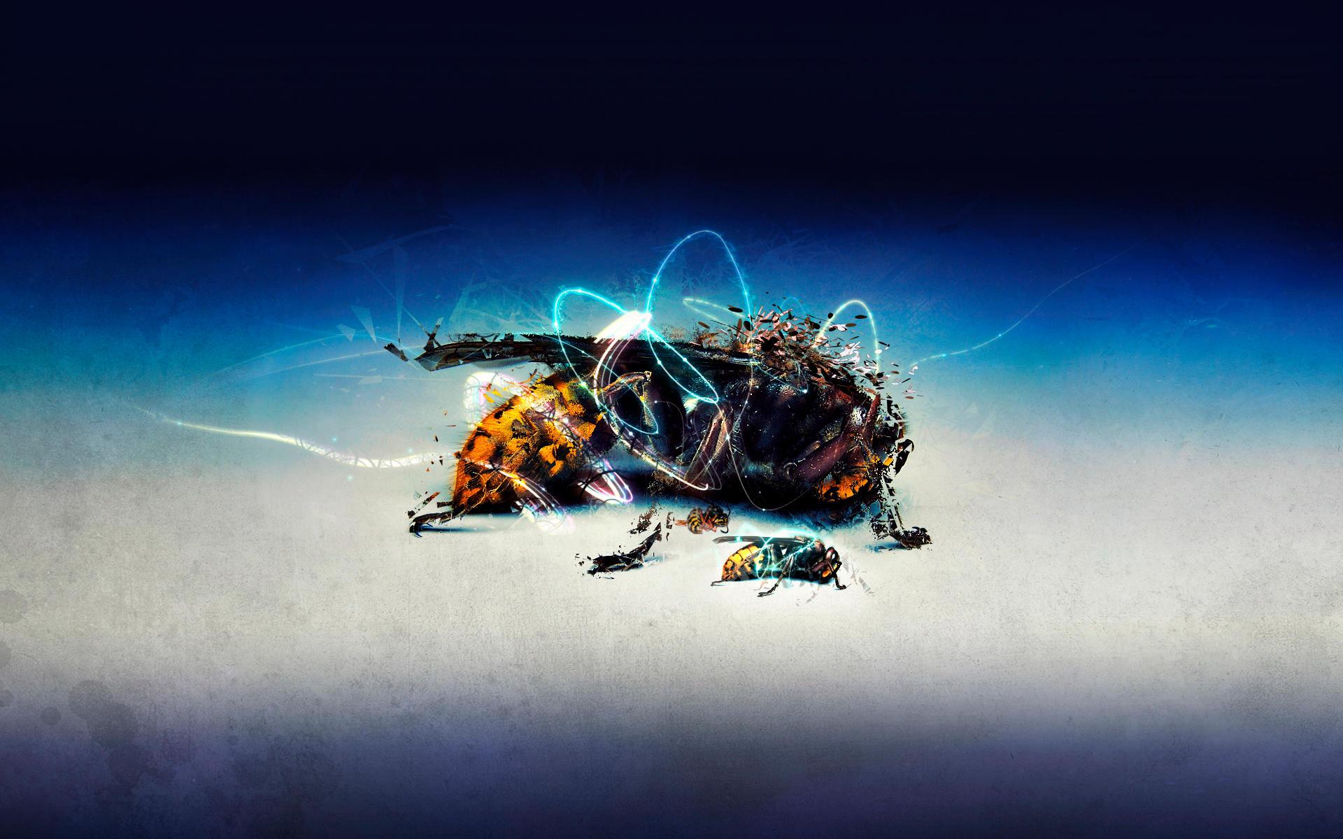 Dead wasp by Psychopulse