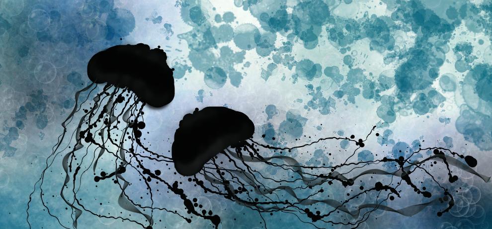 Jellyfish by JB264
