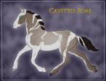Foal 1106