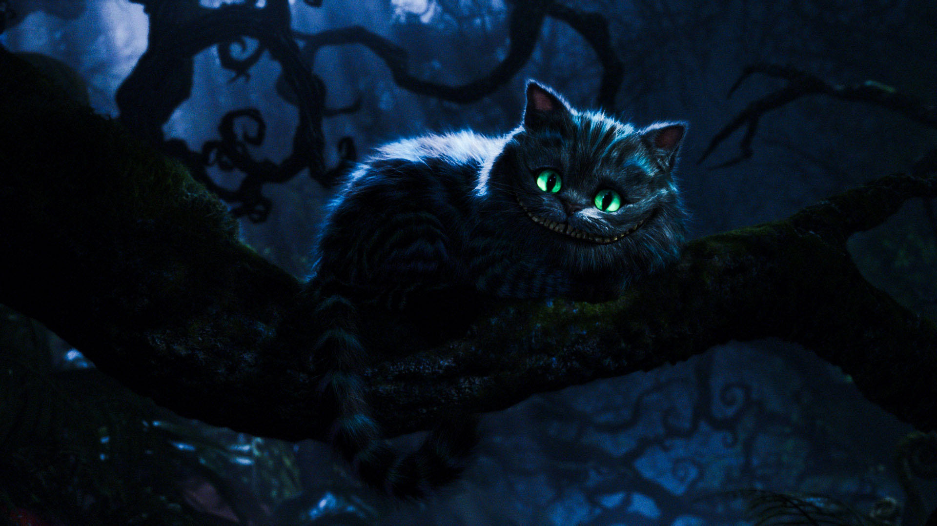 Cheshire Cat 2010 wall...