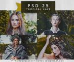 PSD COLORING 25 | Tropical Haze