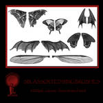 Twisted Mind Assorted Wing Brushes vol 1