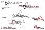 Nightwish brushes
