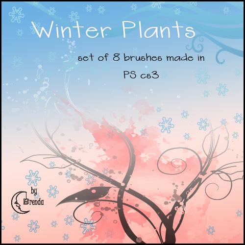 Winter Plants Brushes