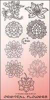Oriental Flowers Brushes