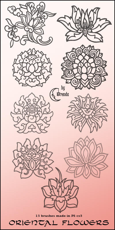 oriental flowers brushes by coby on deviantart, Beautiful flower