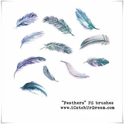 Feathers PS brushes
