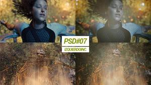 PSD#07