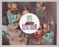 PSD#11: Secret Room by xPEGASVS