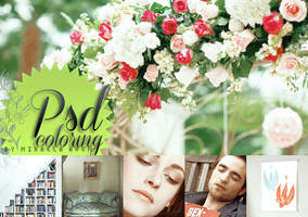 PSD coloring HD full colors + 34 by alma-mora