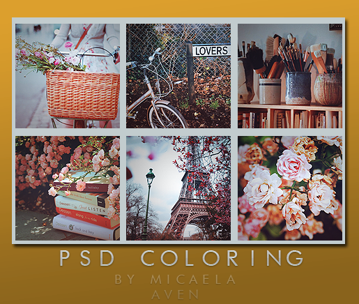 PSD coloring +81