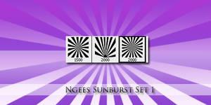 Ngee Sunburst brushes by Kowaresou