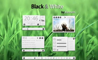 Black and White_For xwidget V1.1