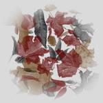 seegie - ratty leaves brushes