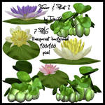 Stock Flower and Plant Pack 2