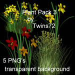 stock plant pack 3