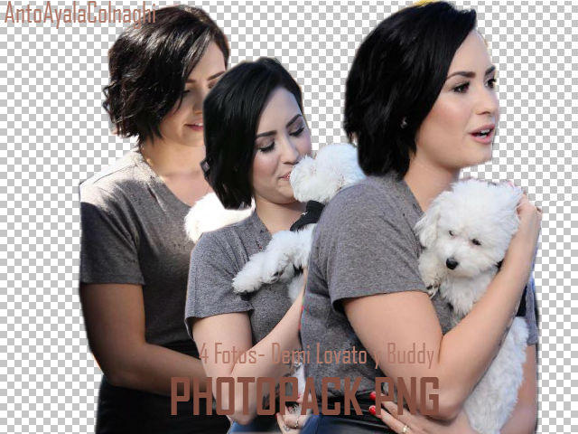 Demi Lovato Y Buddy Png By Antoayalacolnaghi On Deviantart