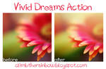 vivid dreams action