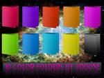 10 Color Folders