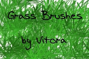 Grass Brushes-Set of 17 by Vitora
