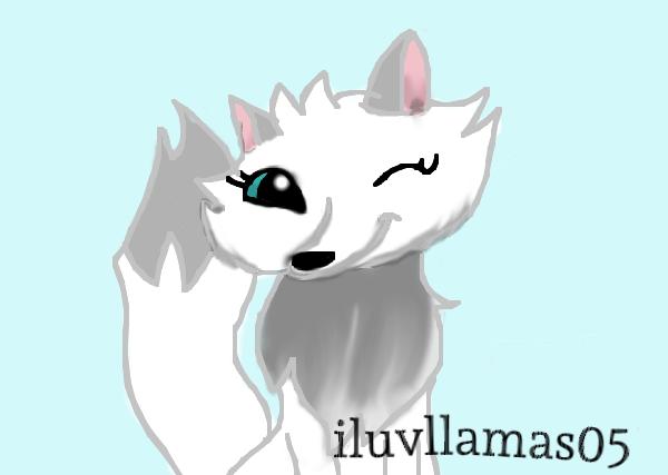 Arctic Fox 2 by iluvllamas05