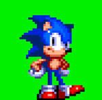 Sonic 3 Styled Idle Animation