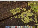 Mac OS X fbpanel config