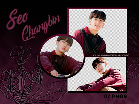 Pack Png #9 - Seo Changbin (Stray Kids)