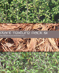 Plant texture pack 01