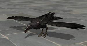 Re6 Crow (original bones)