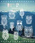 Owls-Brushes {Abr Files}