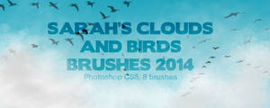 Sarah's Clouds and Birds Brushes