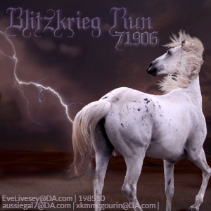 Blitskrieg Run ~ Avi Art Contest by KeonahN