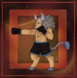 Boxing Taurus