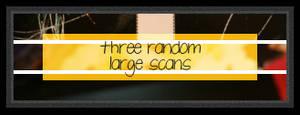 3 Random Texture Scans
