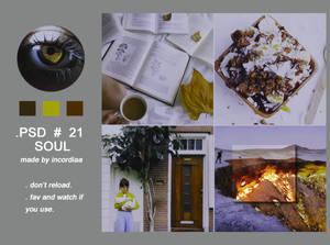 Psd #21 Soul