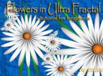Flowers in Ultra Fractal