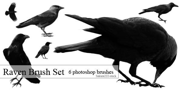 Raven Brush Set by Sakura222-stock