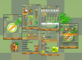Carrot Nokia s40 Theme by Aquafeya