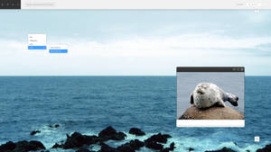 SEAL LITESTEP by mangosango
