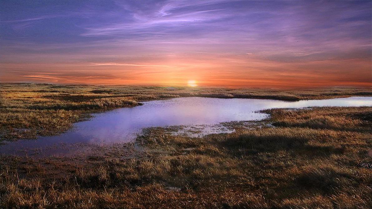 Marsh Down by Frankief