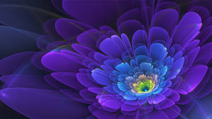 Hybrid Purple