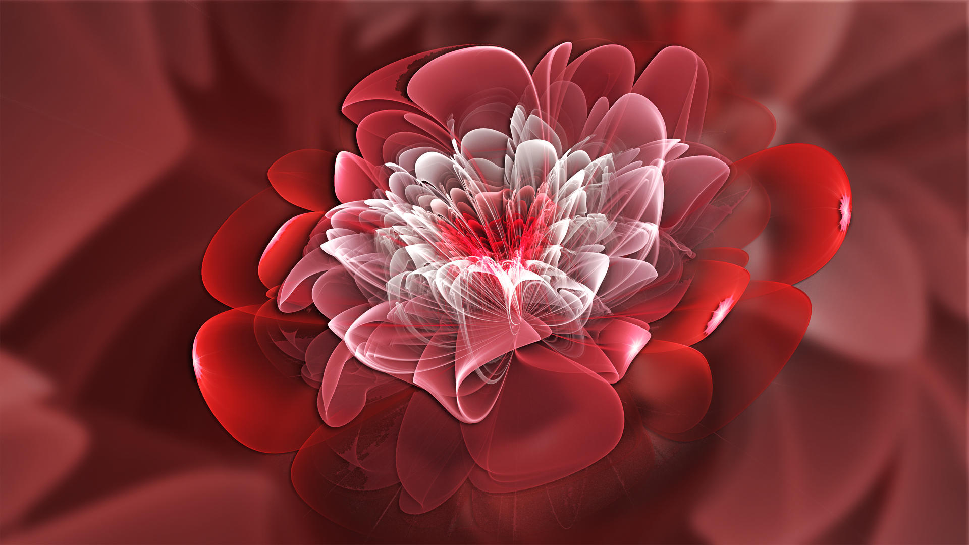 Camellia by Frankief