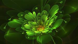 April Green Flower