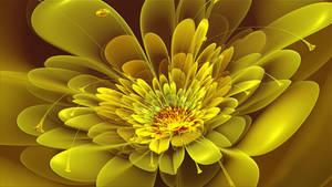 May Yellow 2013