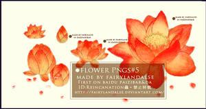 FLOWER PNGS #N
