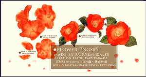 red flowers png